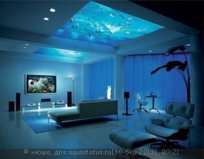 Интересные аквариумы со всего мира - -1XOtahMl3o.jpg