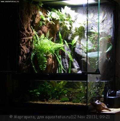 Светодиодные прожекторы для аквариума - S8300030.JPG