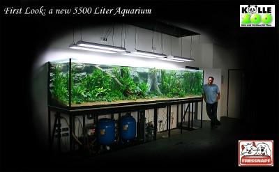 Интересные аквариумы со всего мира - 1.jpg