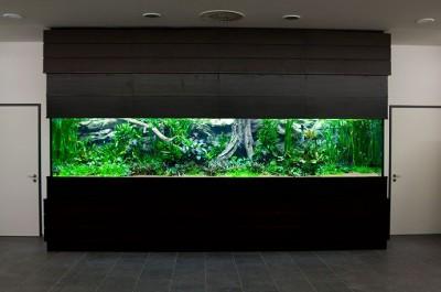 Интересные аквариумы со всего мира - 3.jpg
