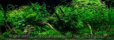 Аквариум акваэль куб 30 литров GNKontrol  - eepadc2013_41.jpg