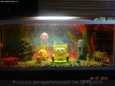 Фото аквариумов объемом от 31 до 100 литров - 8oCXIJ5w6GI.jpg