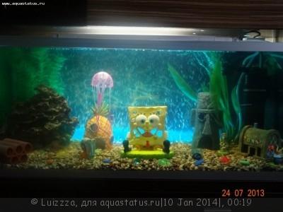 Фото аквариумов объемом от 31 до 100 литров - HkQSNfXIOnc.jpg