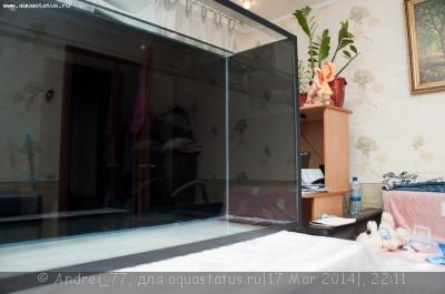 Мой первый самодельный аквариум 160 литров Andrei_77  - DSC_0359.jpg