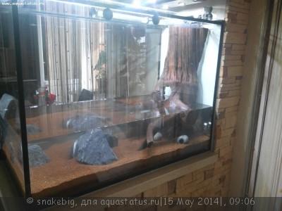 Сквозной аквариум 230 литров snakebig  - IMG_20140509_083346.jpg