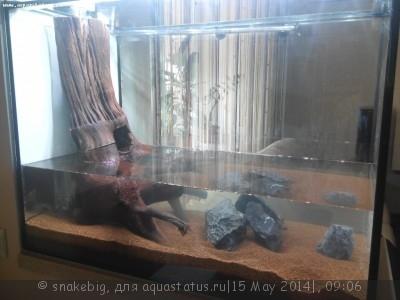 Сквозной аквариум 230 литров snakebig  - IMG_20140509_083358.jpg