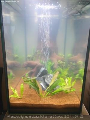 Сквозной аквариум 230 литров snakebig  - IMG_20140510_205721.jpg