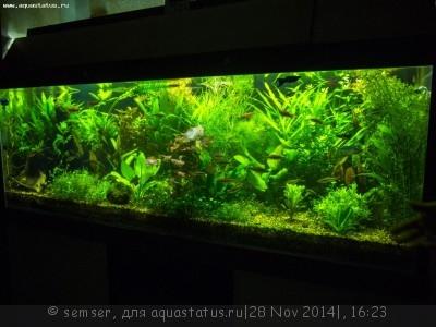 Светодиодное освещение аквариума - 400004.jpg