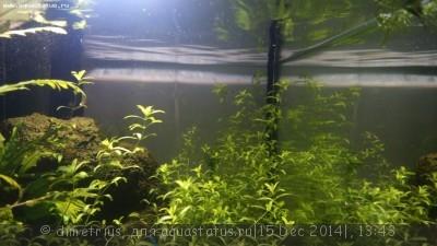 Светодиодное освещение аквариума - DSC_0018.JPG