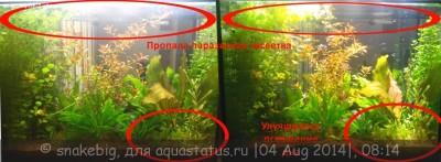 Светодиодное освещение аквариума - 57451.jpg