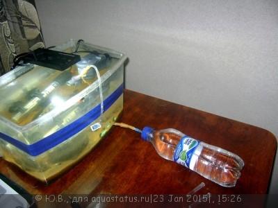 Самый простой источник СО2 в аквариуме - вода из бутылки.JPG