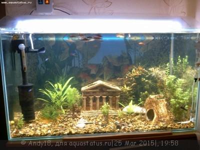 Светодиодное освещение аквариума - IMG_20150323_204224_700.jpg