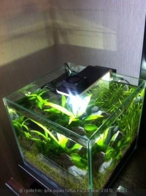 Светодиодное освещение аквариума - tIsVj8w3QLM.jpg