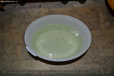 Мутная вода в аквариуме, муть в аквариуме - DSC_7015.JPG