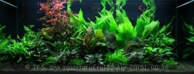 Грунт в аквариуме - akvar.jpg