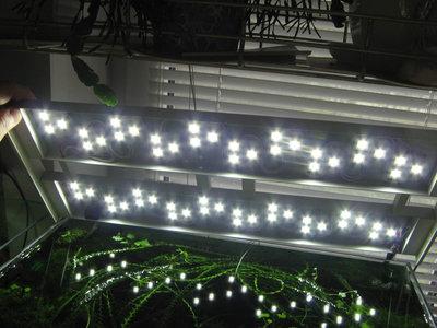 Светодиодное освещение аквариума - IMG_2633_thumb.jpg