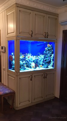 Фото аквариумов объемом свыше 401 литра - image.jpg