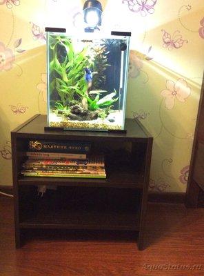 Выдержит ли тумба аквариум? - image.jpeg