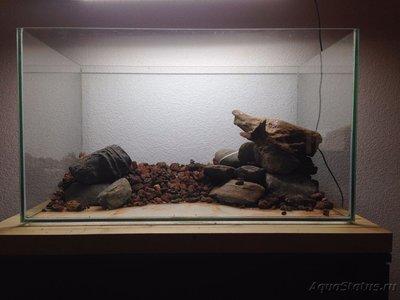 Мой аквариум Moss 110 литров Рома Beat  - IMG_0922[1].JPG