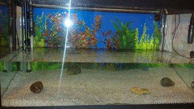 Бюджетный подогрев грунта в аквариуме своими руками - 1459006030410-664893367.jpg