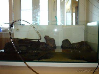 70 воды добавил из действующего аквариума - P1030499.JPG