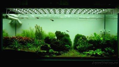 Аквариум Подводный метр 200 литров snakebig  - P1030557.JPG