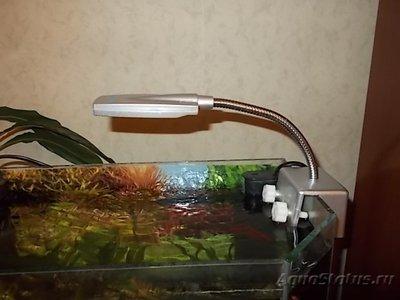 Светодиодное освещение аквариума - 003.JPG