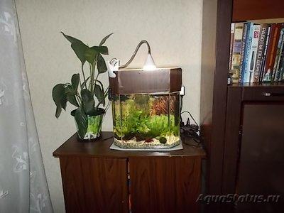Светодиодное освещение аквариума - 002.JPG