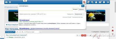 Поиск по форуму - поиск1.jpg