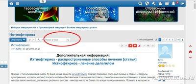 Поиск по форуму - поиск5.jpg