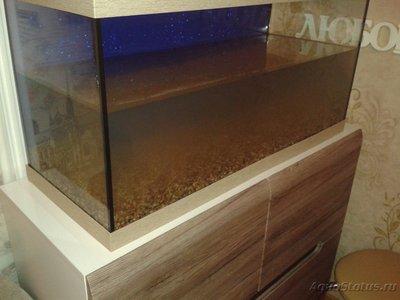 Мой аквариум первачок на 150 литров vov4ik  - 20170211_190014.jpg