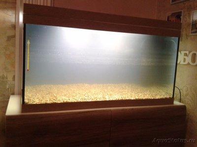 Мой аквариум первачок на 150 литров vov4ik  - 20170211_195412.jpg