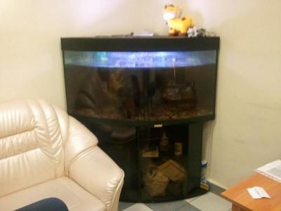 Вид аквариума - Фото0039.jpg