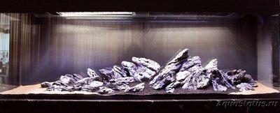 Запуск аквариума - запуск аквариума 2.jpg