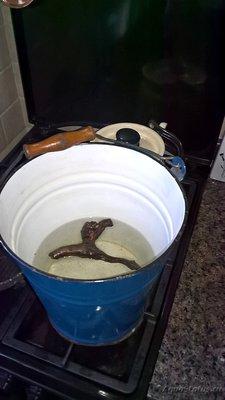 Коряга в аквариуме - vedro1.jpg