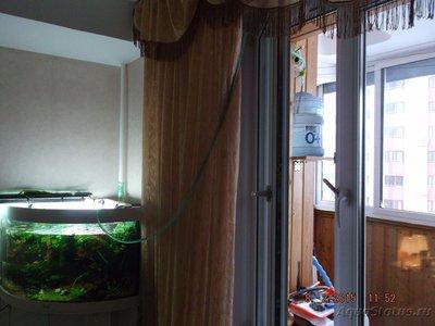 Способы подмены воды в аквариуме - DSCF4747.JPG