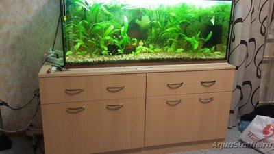 Неровно стоит аквариум - 20180122_190513.jpg