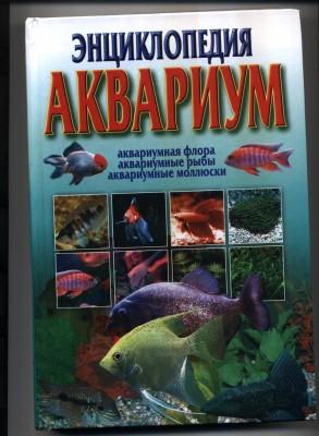 Наш аквариум 80 литров Михаил и ИринаС  - 222.jpg